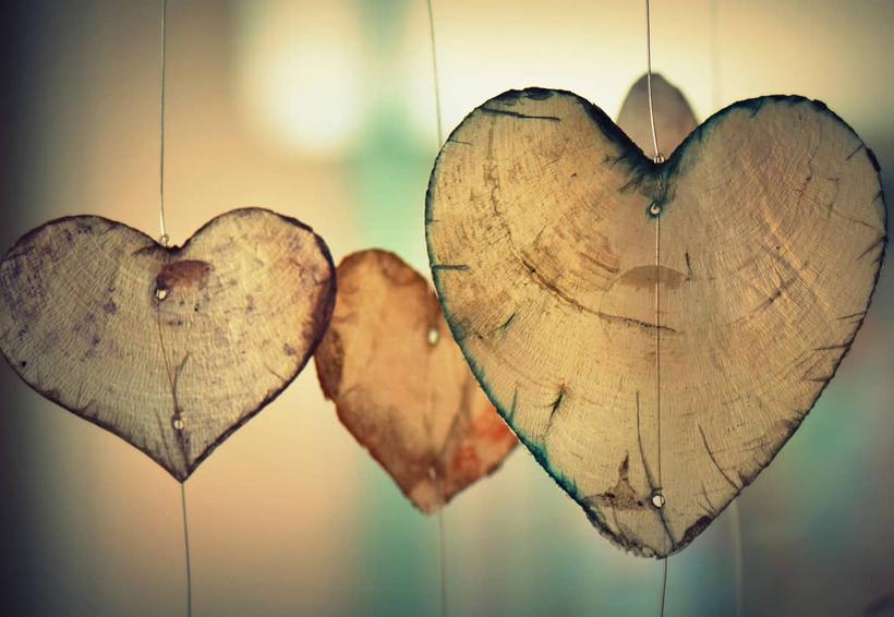 Reconoce las formas de dar amor y cultívalas | El Imparcial de Oaxaca