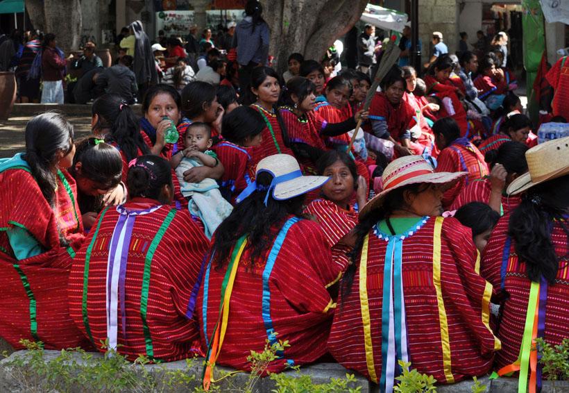 SAI, un elefante blanco | El Imparcial de Oaxaca
