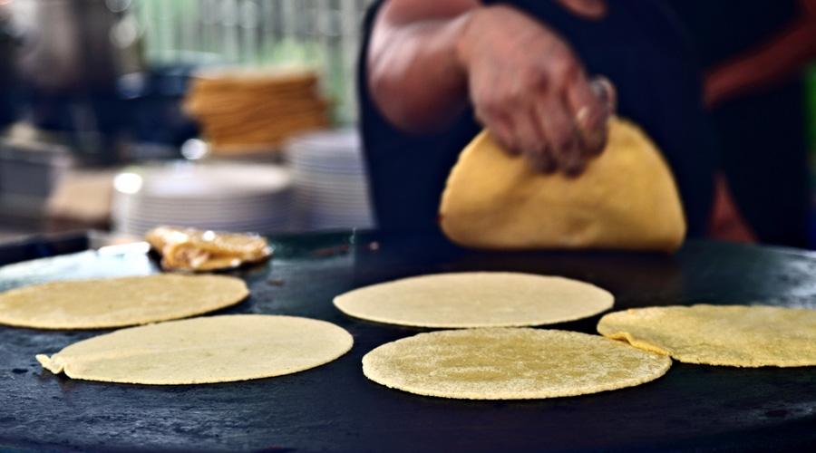 Pan y tortillas mexicanos, riesgo para la salud de las personas: estudio | El Imparcial de Oaxaca