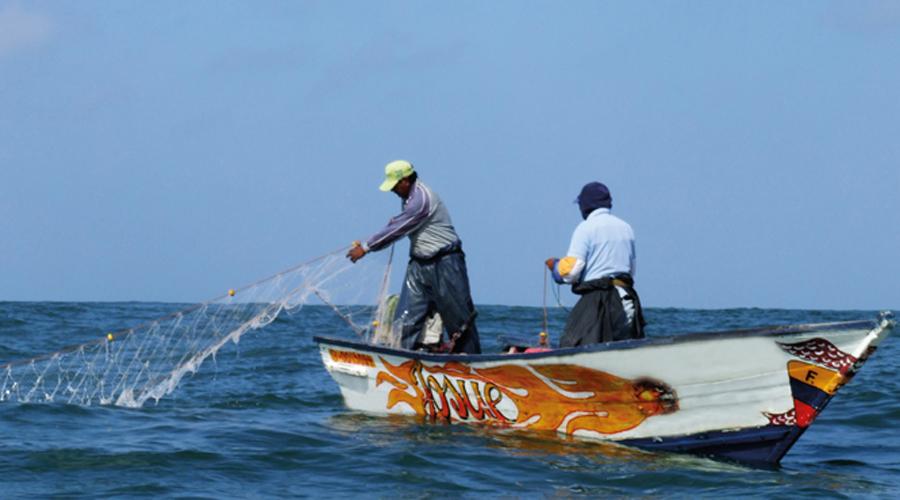 Mexicanos participarán en evaluación de recursos pesqueros en mares de siete países | El Imparcial de Oaxaca