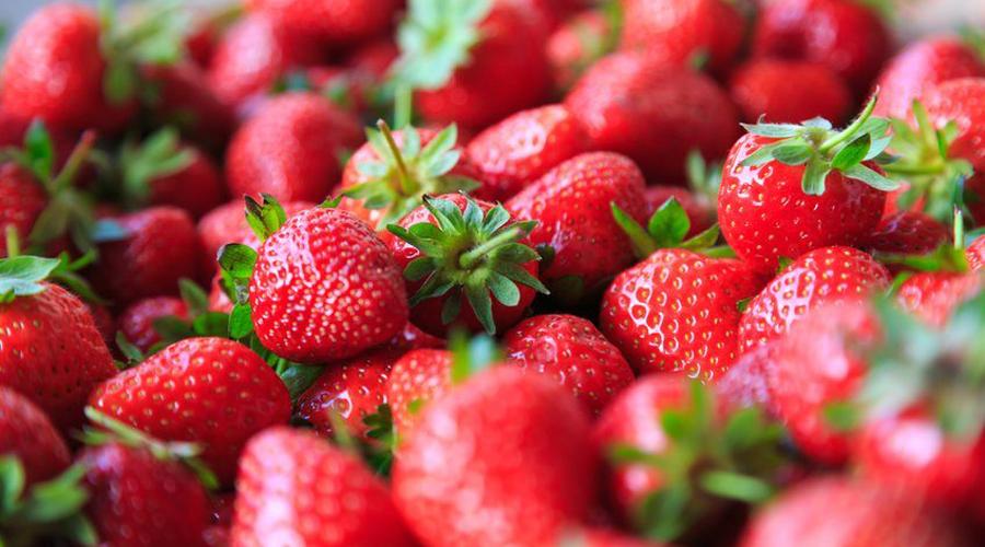 Fresas ayudan a prevenir y reducir el Alzheimer | El Imparcial de Oaxaca