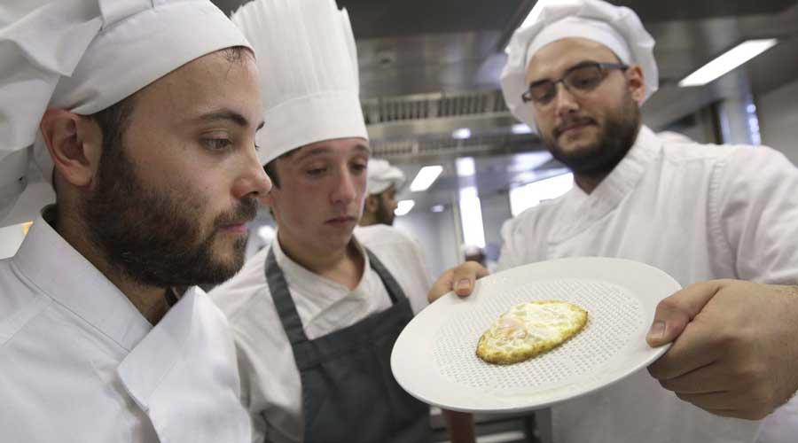 El plato poroso que absorbe la grasa excedente de las comidas | El Imparcial de Oaxaca