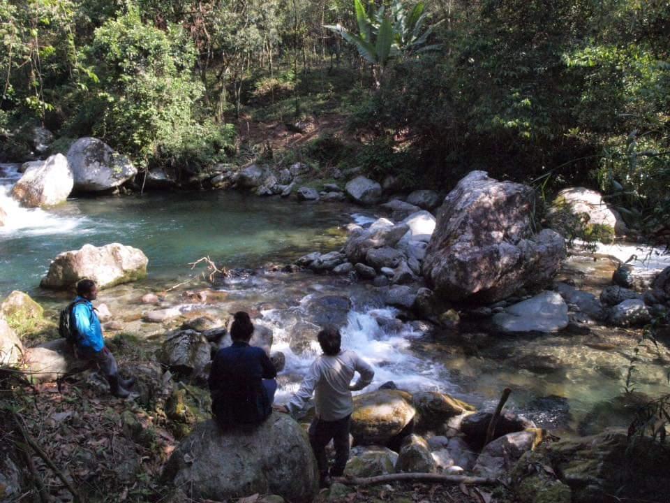 En la Chinantla de Oaxaca, avanza la Ruta del Jaguar | El Imparcial de Oaxaca