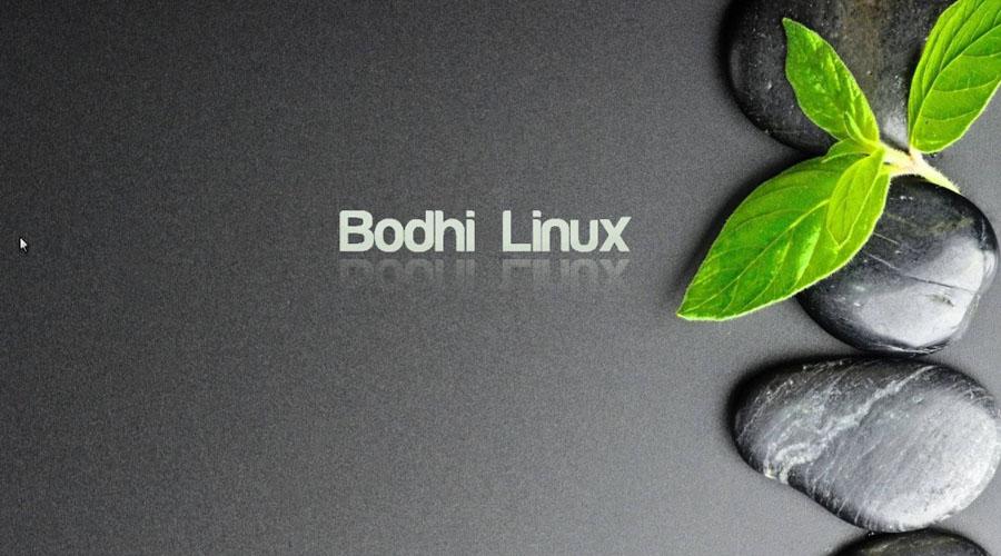 Bodhi Linux: la interesante distribución de Linux | El Imparcial de Oaxaca