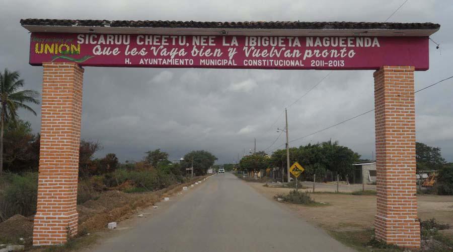 Fallece militar por ataque de abejas en Unión Hidalgo, Oaxaca | El Imparcial de Oaxaca