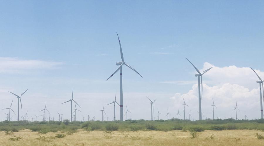Frena SENER permisos de  parques eólicos en el Istmo   El Imparcial de Oaxaca