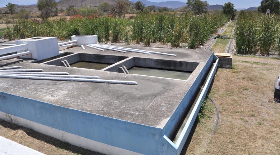 Capacita Wetlands a operadores de  plantas de tratamiento de aguas   El Imparcial de Oaxaca