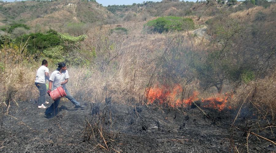 Sofocan vecinos incendio en Jamiltepec | El Imparcial de Oaxaca