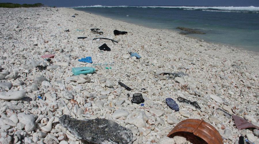 Islas australianas padecen presencia de 414 millones de piezas plásticas desechadas | El Imparcial de Oaxaca