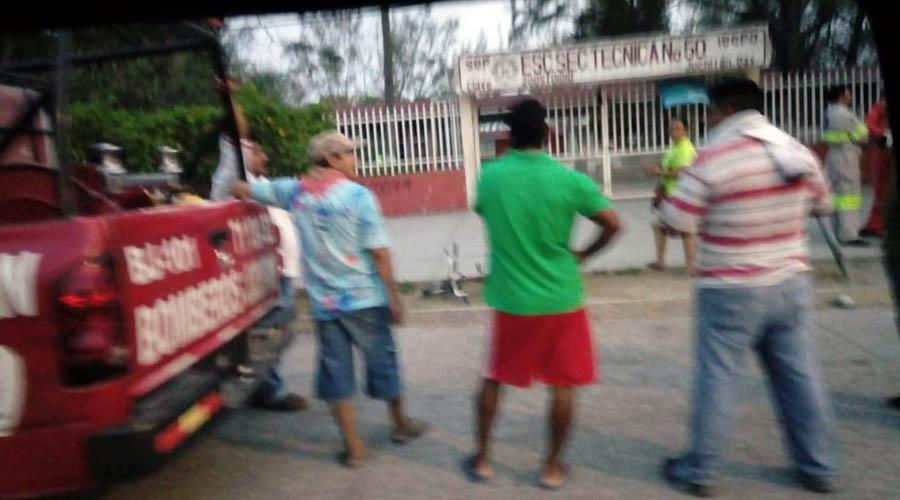 Alumnos de secundaria, bajo ataque de abejas, en Juchitán | El Imparcial de Oaxaca