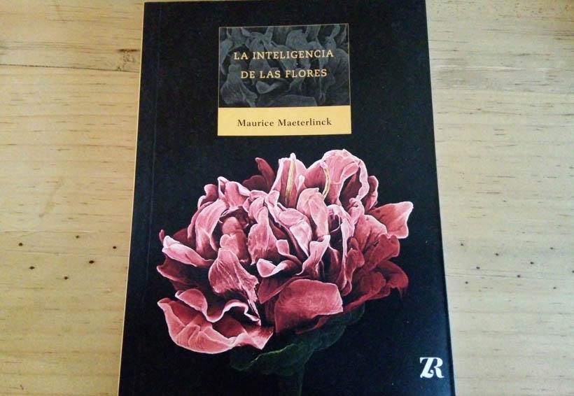 Maurice Maeterlinck  vuelve a través de las flores | El Imparcial de Oaxaca