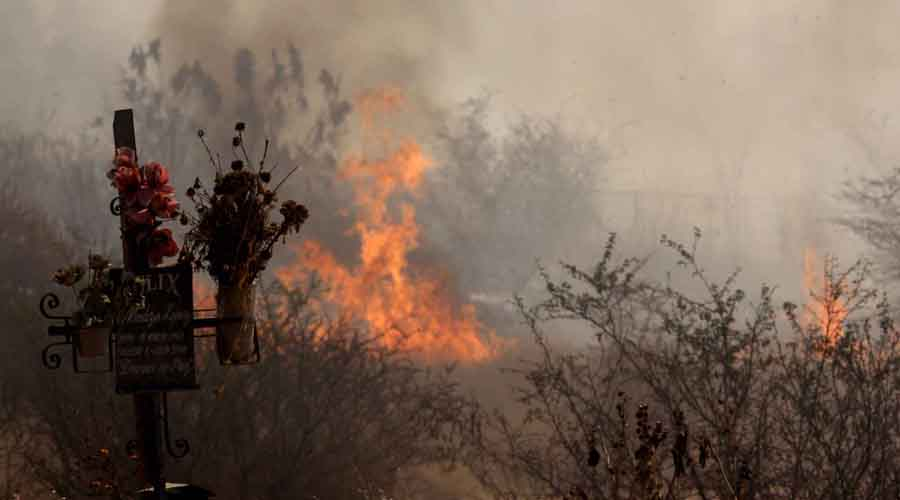 Con 50 mil hectáreas afectadas en Oaxaca, cierra la temporada de incendios | El Imparcial de Oaxaca