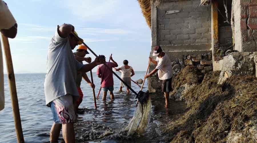 Descartan sargazo en Playa Vicente, Juchitán   El Imparcial de Oaxaca