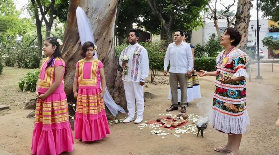 Celebran en Oaxaca boda con un árbol | El Imparcial de Oaxaca