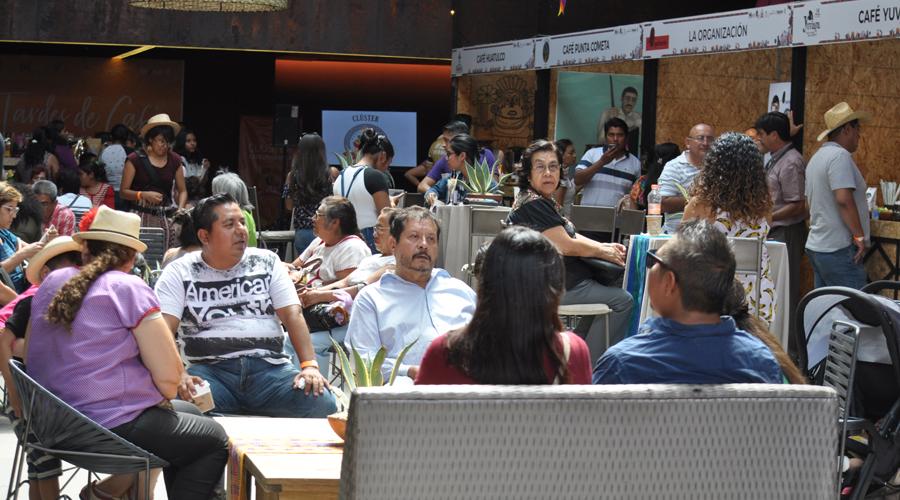 Con Clúster Café buscan posicionar el oro verde en Oaxaca | El Imparcial de Oaxaca