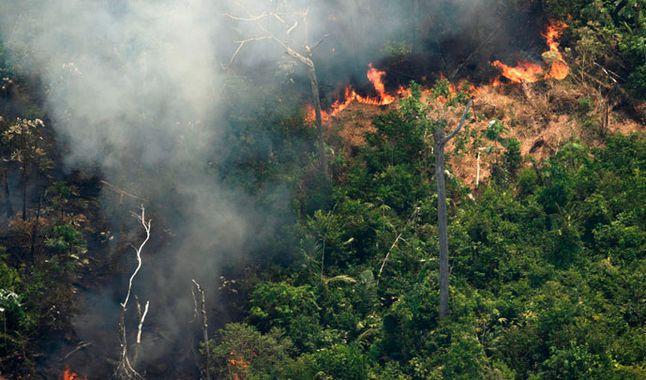 Brasil despliega aviones para combatir incendio en el Amazonas | El Imparcial de Oaxaca