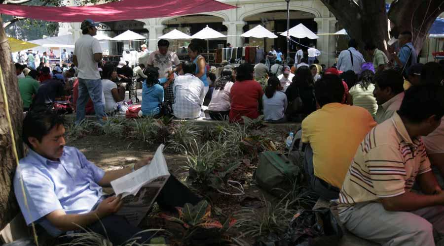 Exigen cuidar y proteger las áreas verdes de la ciudad capital   El Imparcial de Oaxaca
