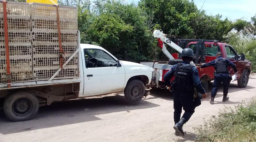 Roban camioneta cargada de pollos en Xadani | El Imparcial de Oaxaca