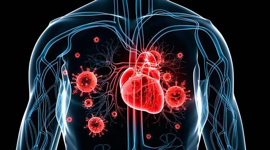 Infección cardiaca, ligada a opioides, se vuelve epidemia en EU | El Imparcial de Oaxaca