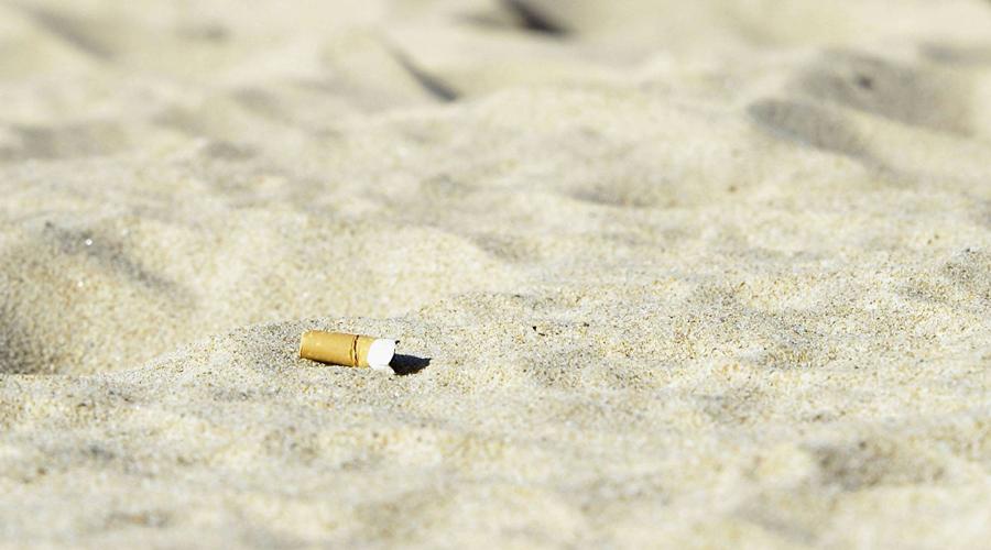 Colillas de cigarros contaminan más que popotes en el mar | El Imparcial de Oaxaca