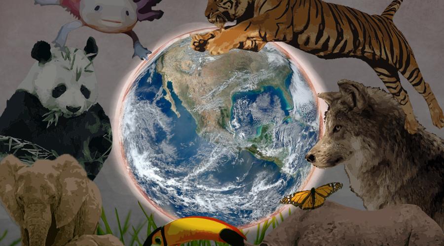 Científicos descubren una sexta extinción masiva en la Tierra | El Imparcial de Oaxaca