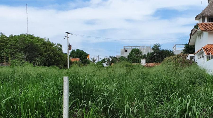 Piden a propietarios limpiar sus lotes en Fraccionamiento Bacocho | El Imparcial de Oaxaca