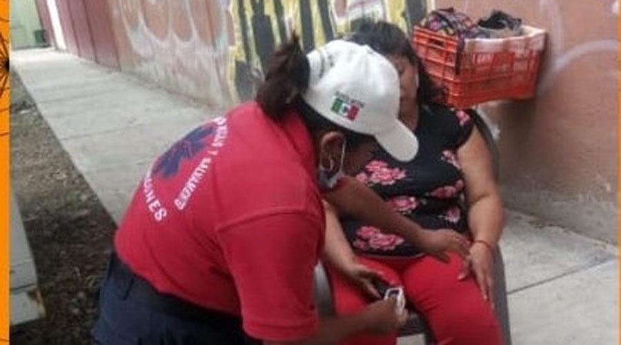 Ataque de abejas en Santa Lucia del Camino deja una lesionada | El Imparcial de Oaxaca