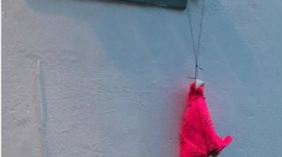Dejan otra cabeza de cerdo con un mensaje | El Imparcial de Oaxaca