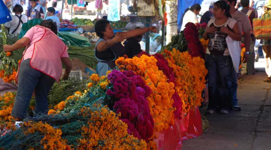 Repuntan ventas por Fiestas de Muertos en la ciudad capital | El Imparcial de Oaxaca