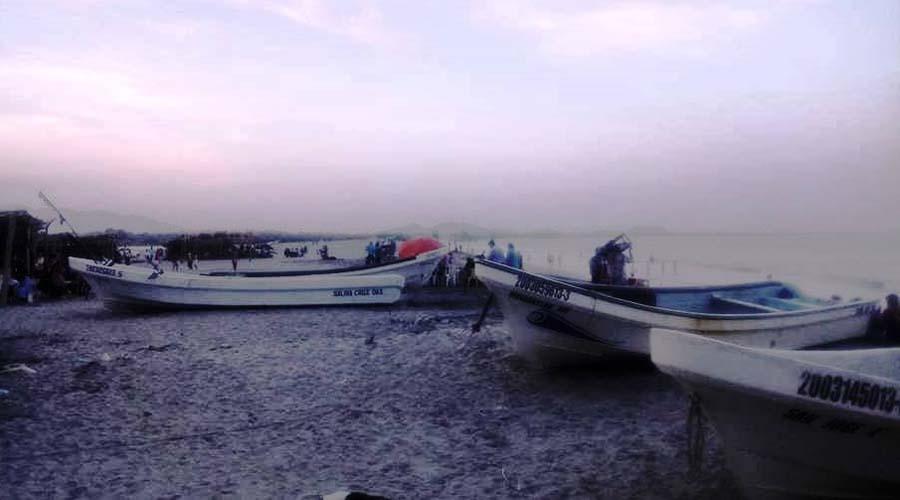 Pemex acaba con la fauna marina, acusa agente municipal de las Salinas del Marqués | El Imparcial de Oaxaca