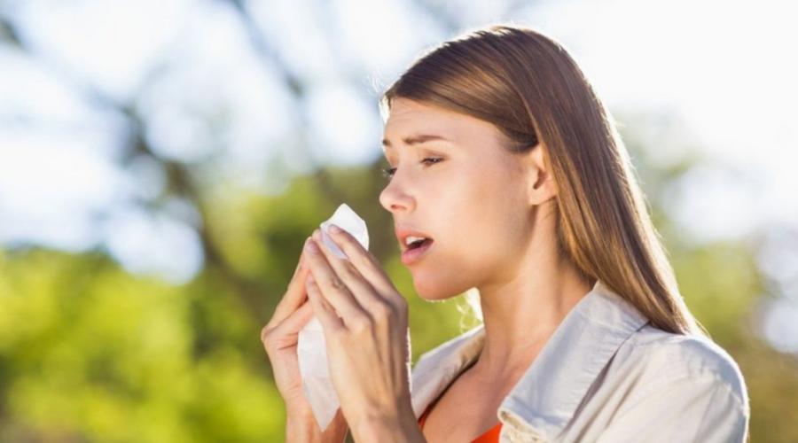 Cómo distinguir entre una alergia y catarro | El Imparcial de Oaxaca