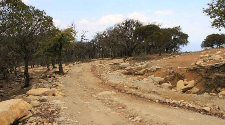 A la baja metas alcanzadas por CAO durante 2019 | El Imparcial de Oaxaca