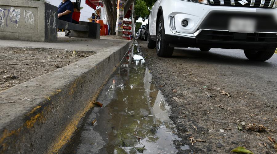 Casetas de comida, sin supervisión alguna   El Imparcial de Oaxaca