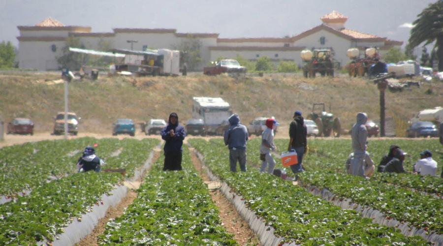 Serán beneficiados productores mixtecos | El Imparcial de Oaxaca