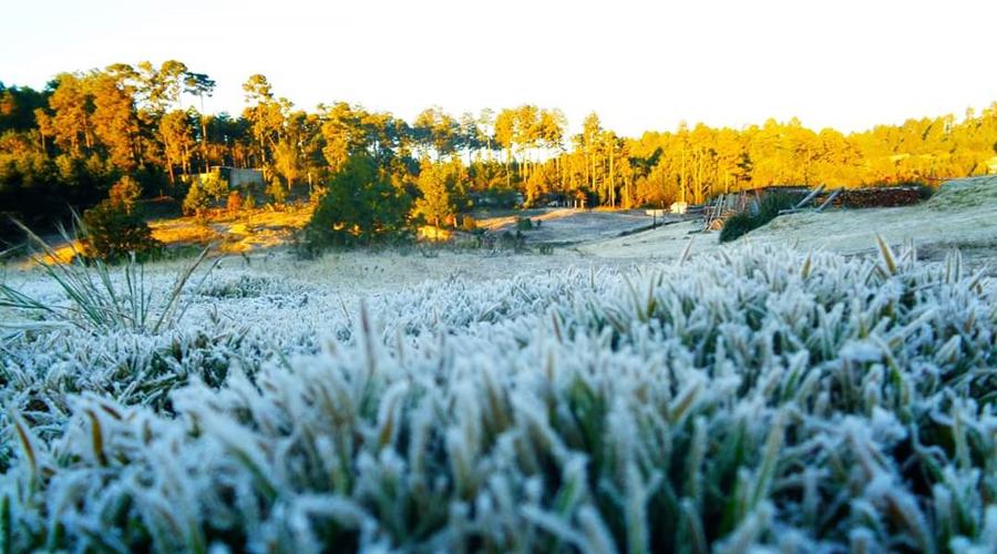 Merman producción de maíz sequías y heladas en Oaxaca | El Imparcial de Oaxaca