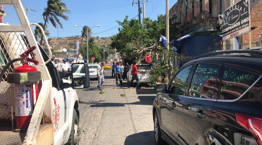 Fuertes vientos causan estragos en el Istmo | El Imparcial de Oaxaca