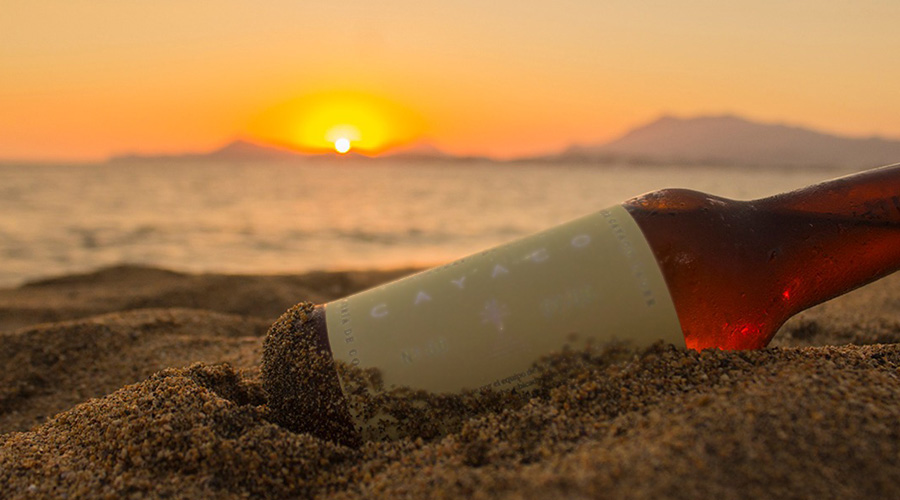 Ingeniera mexicana crea cerveza artesanal con agua de mar   El Imparcial de Oaxaca
