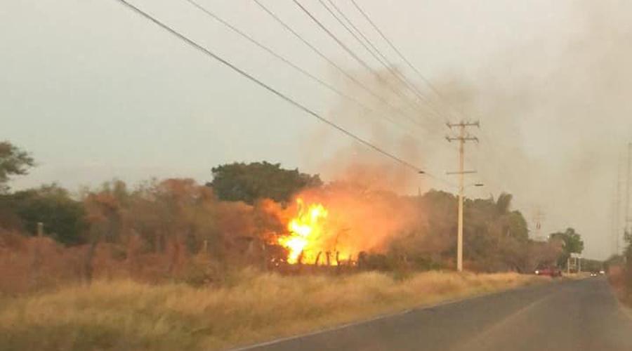 Campesinos suelen provocar incendios en la región del Istmo | El Imparcial de Oaxaca