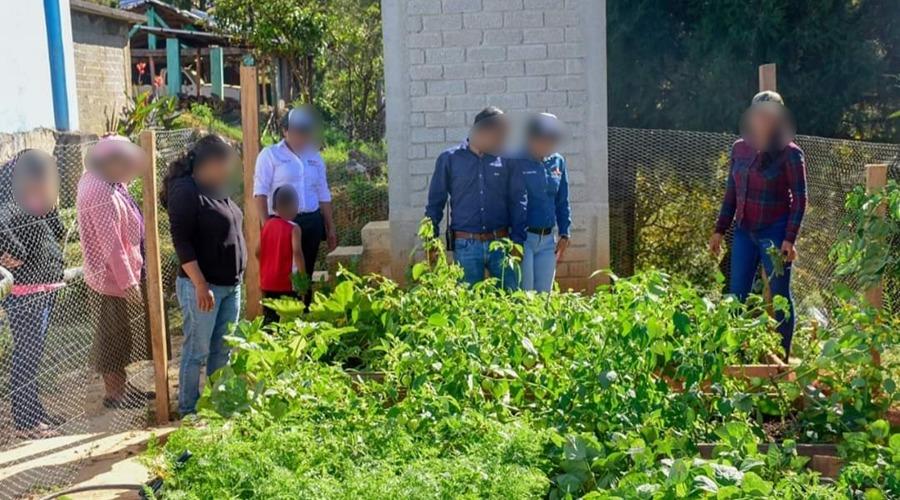 Cultivo de hortalizas, factor de unidad en  familias de Itundujia | El Imparcial de Oaxaca