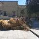 Nacimientos y Reyes Magos dejan más de 20 toneladas de basura