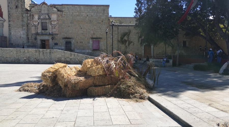 Nacimientos y Reyes Magos dejan más de 20 toneladas de basura | El Imparcial de Oaxaca