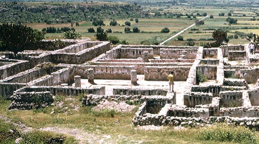 Siembra de semillas en área natural Yagul | El Imparcial de Oaxaca