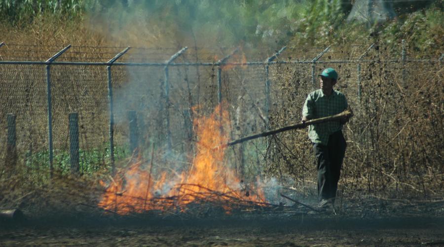 Vigilarán práctica de roza y quema | El Imparcial de Oaxaca