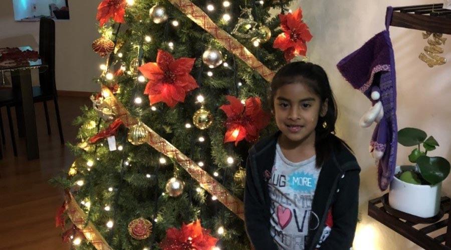 ¿Qué representa el árbol de navidad?   El Imparcial de Oaxaca