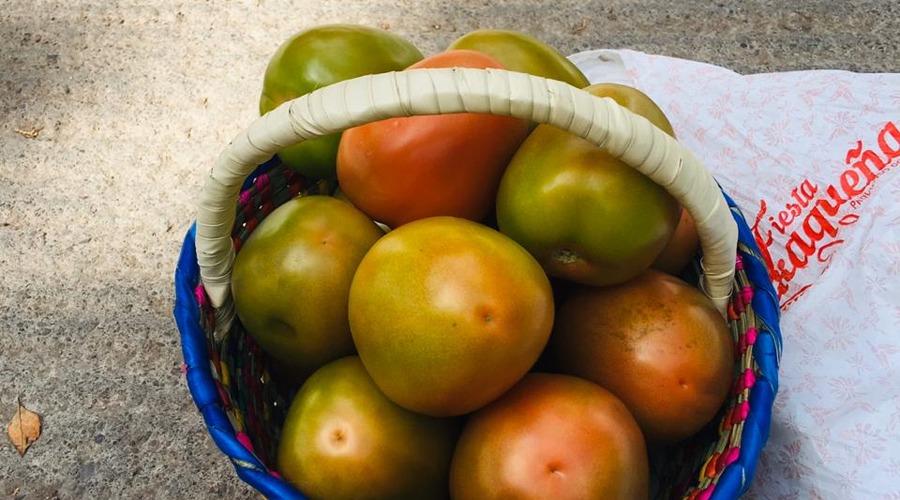 Buscan optimizar uso del agua para mejorar cultivos en Huajuapan | El Imparcial de Oaxaca