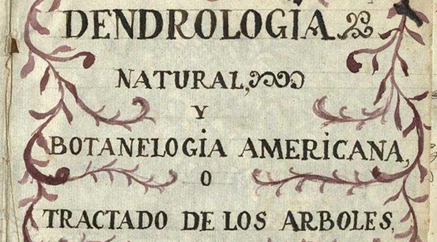 De botánica, la obra de fray Juan Caballero en la Cervantes | El Imparcial de Oaxaca