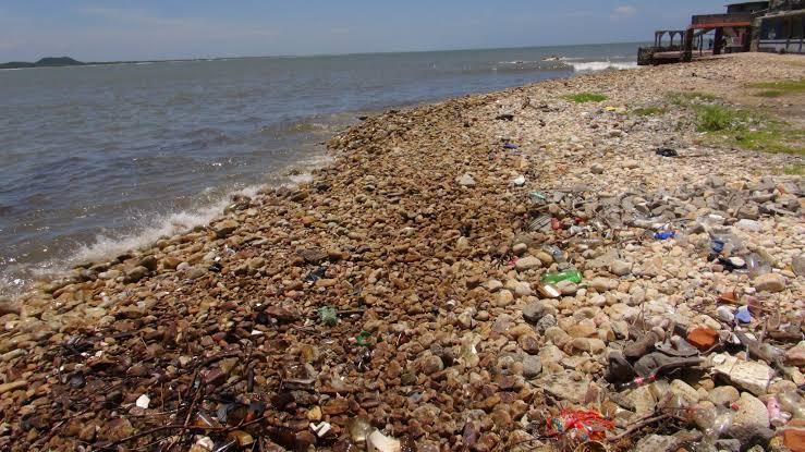 Basura de los cinco continentes cubre los océanos | El Imparcial de Oaxaca