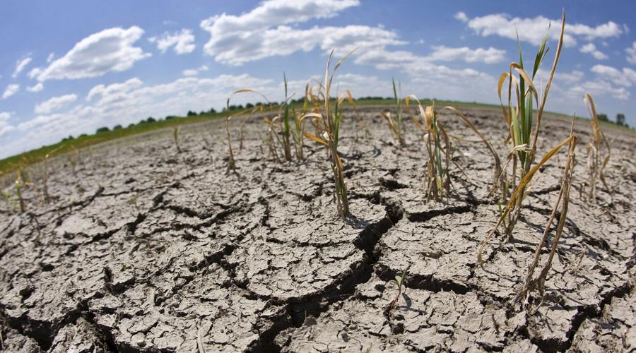 Pegará escasez de lluvia en la mayor parte del estado | El Imparcial de Oaxaca