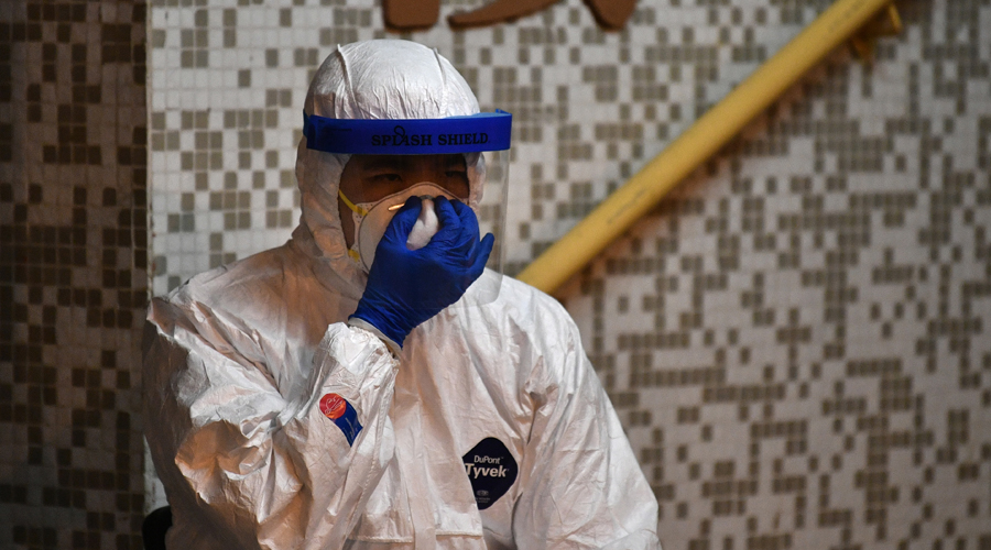 Científicos chinos identifican al pangolín como eslabón clave en la transmisión del coronavirus | El Imparcial de Oaxaca