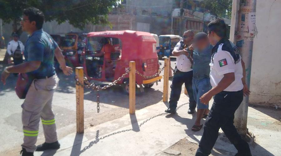 Abejas africanizadas atacan a vecinos de la Octava Sección en Juchitán | El Imparcial de Oaxaca